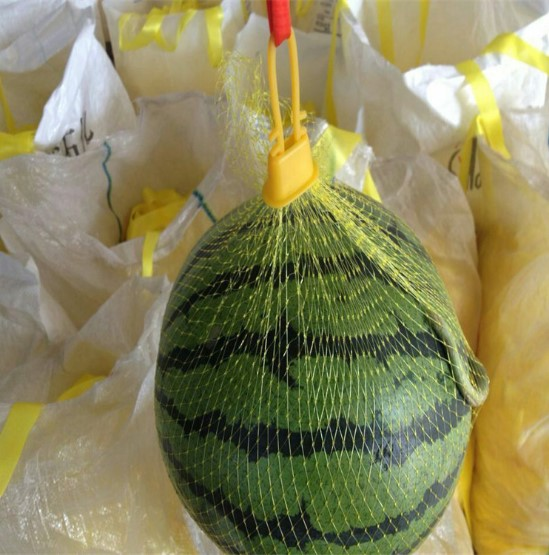 Flexible Mesh Netting Bags Non - Toxic Good Extensibility For Watermelon